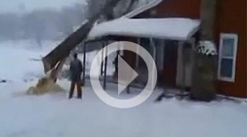 Bûcheron : arbre tombe sur sa maison